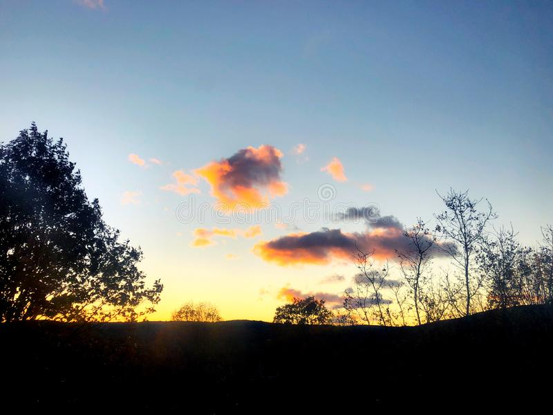 Beau coucher du soleil avec la silhouette de feuilles d'arbre et les nuages colorés photographie stock