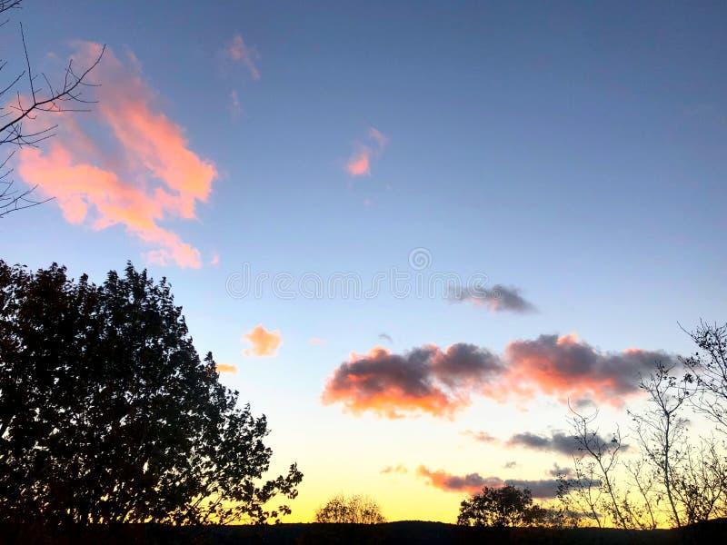 Beau coucher du soleil avec la silhouette de feuilles d'arbre et les nuages colorés photo stock