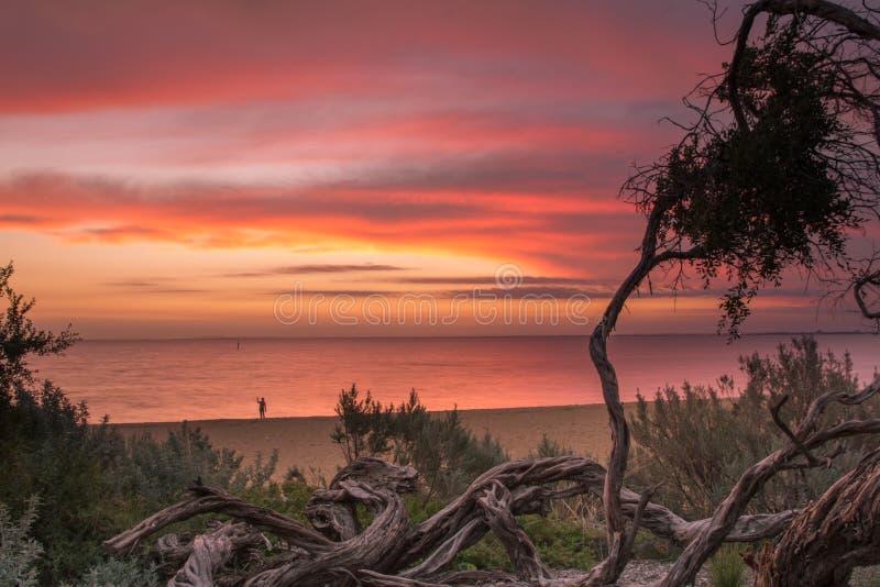 Beau coucher du soleil chez Brighton Beach images libres de droits