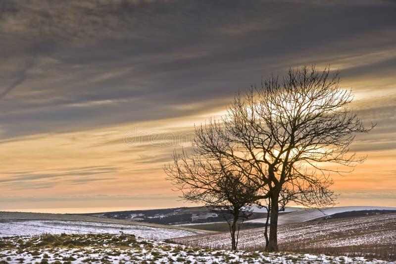 Beau coucher du soleil coloré au-dessus de landsc de l'hiver images libres de droits