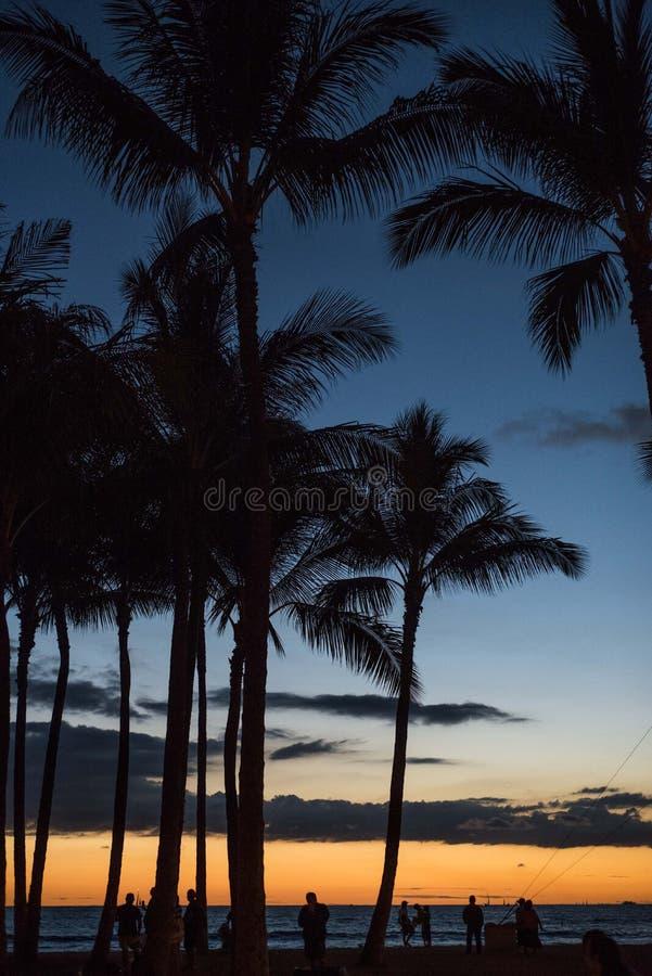 Beau coucher du soleil de Waikiki photo stock
