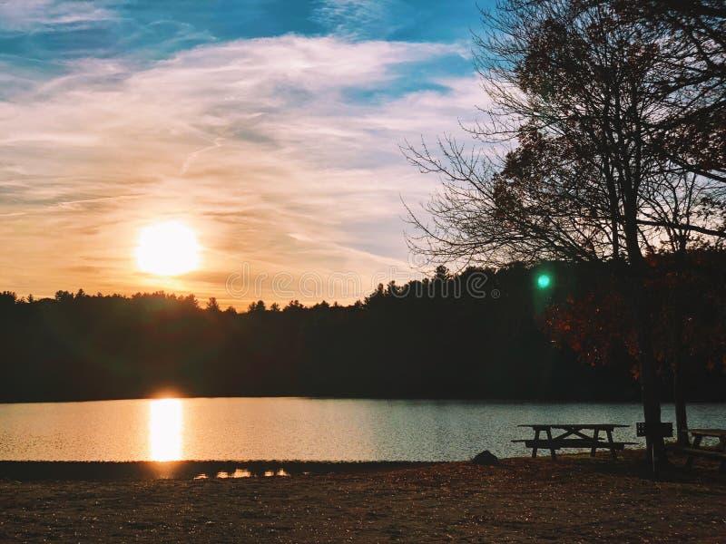 Beau coucher du soleil par le lac et la silhouette d'arbres image stock
