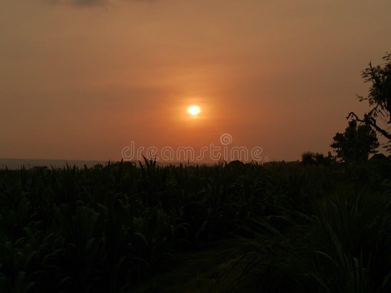 Beau coucher du soleil sur mon pays photo stock