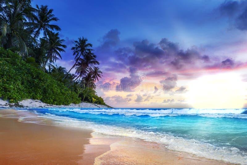 Beau coucher du soleil sur une île hawaïenne Couleurs vibrantes image libre de droits