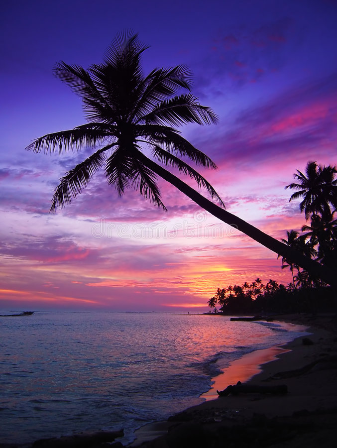 Beau coucher du soleil tropical images libres de droits