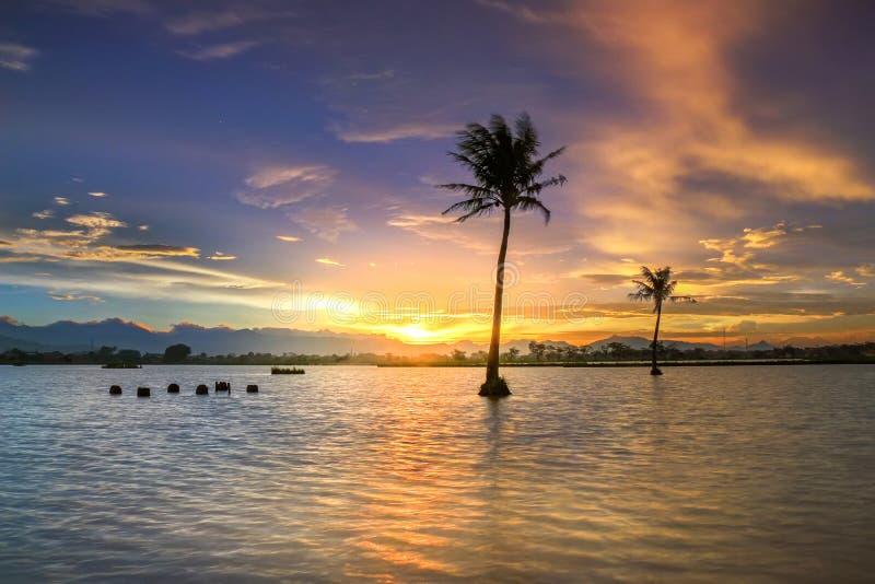 Beau crépuscule dans un lac avec des arbres de noix de coco photos stock