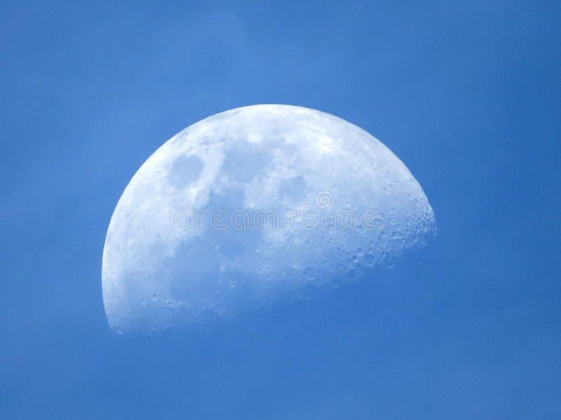 Beau croissant de lune bleu photographie stock libre de droits
