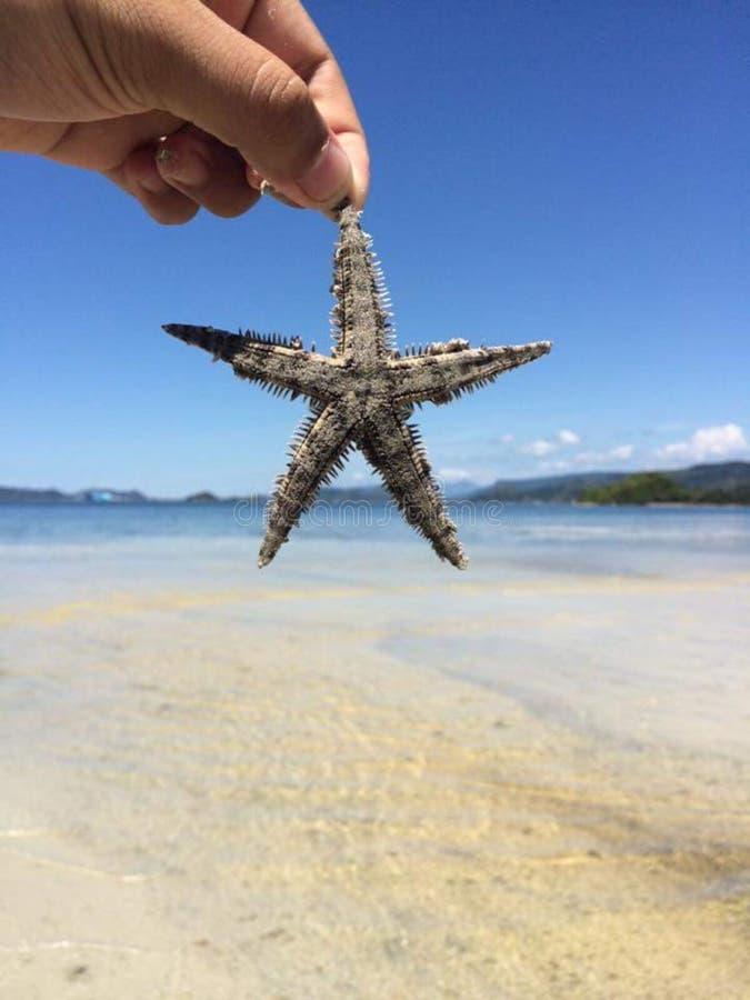 Beau déplacement d'eau de mer de plage et d'étoile image stock