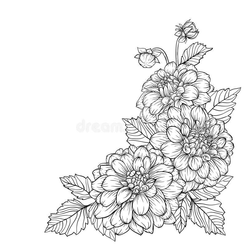 Beau dahlia noir et blanc monochrome de bouquet d'isolement sur le fond illustration stock