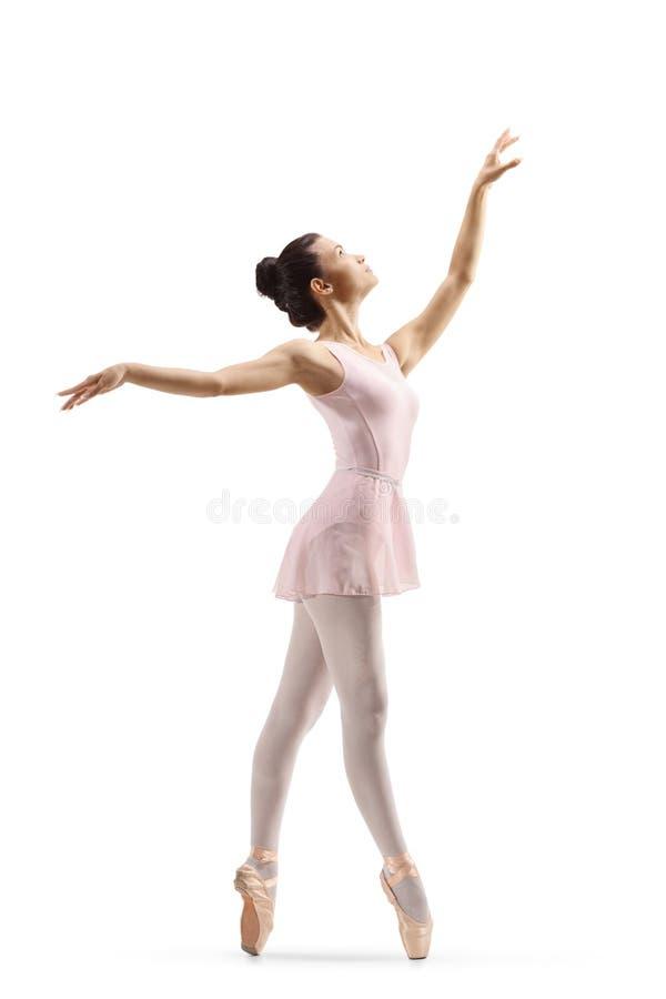 Beau danseur classique féminin élégant photo libre de droits