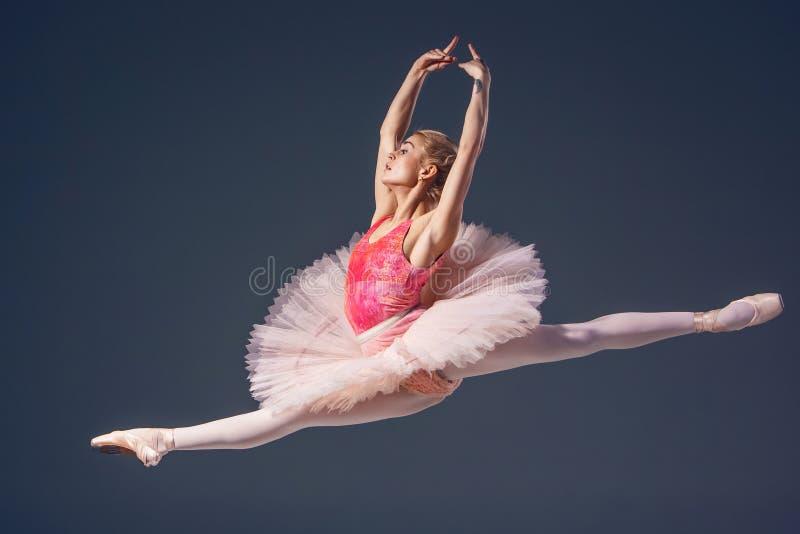 Beau danseur classique féminin sur un gris images stock