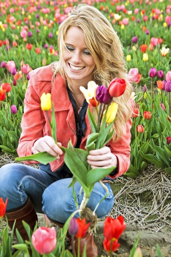 Beau femme avec des tulipes dans les domaines image stock