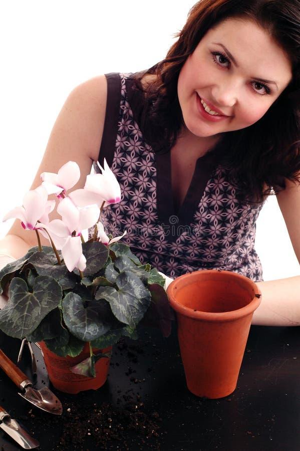 Beau femme blanc avec des fleurs photos stock