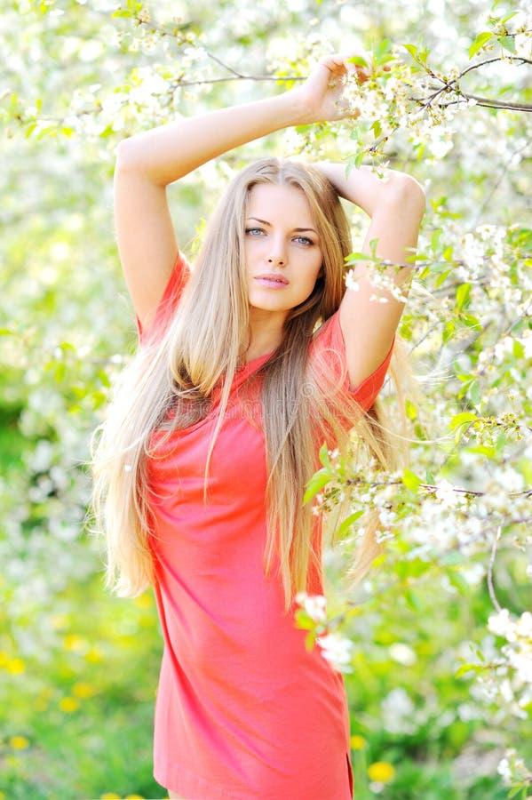 Beau femme dans l'arbre de floraison au printemps image libre de droits