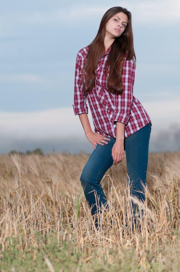 Beau femme de cowboy posant dans le domaine image stock