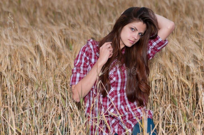Beau femme de cowboy posant dans le domaine images stock