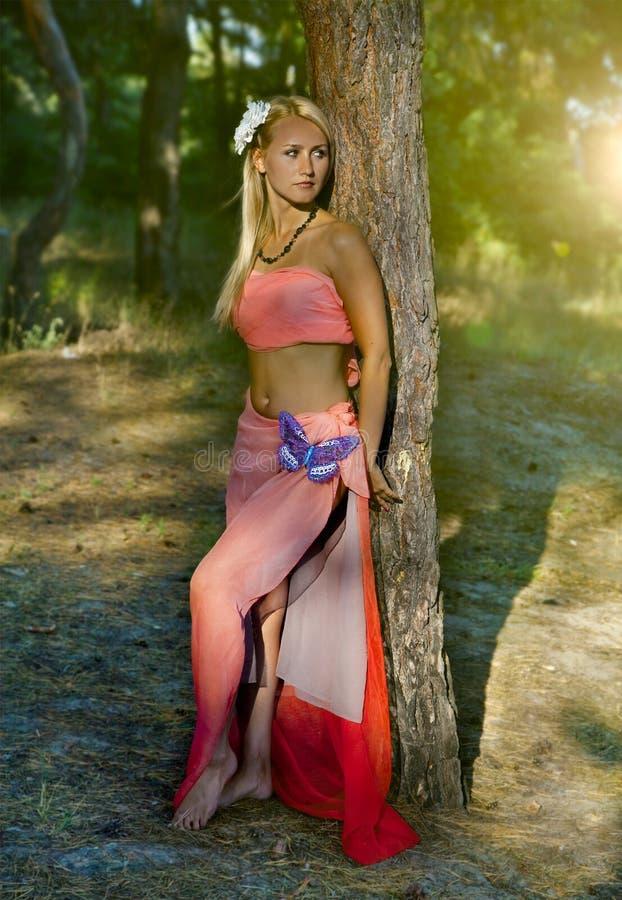 Beau femme romantique à la forêt de féerie photographie stock