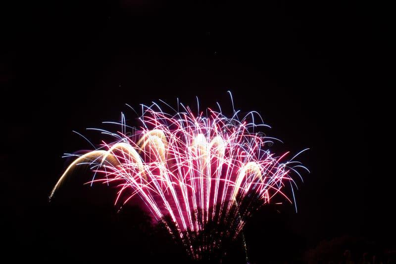 Beau feu d'artifice dans le ciel photographie stock