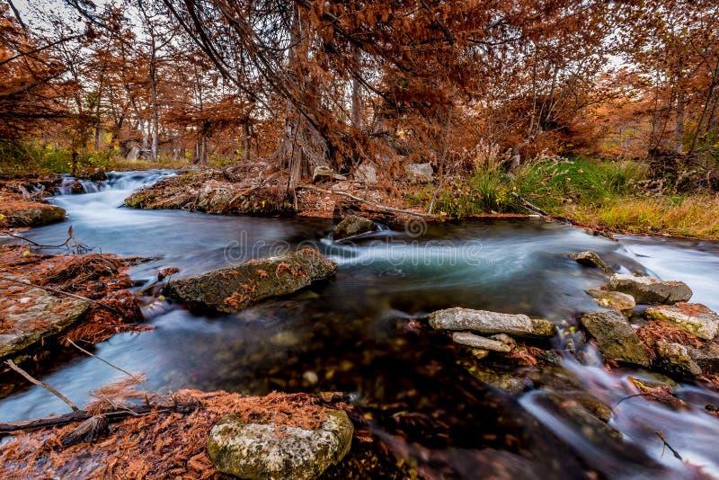 Beau feuillage d'automne sur les eaux soyeuses de Guadalupe River, le Texas images libres de droits