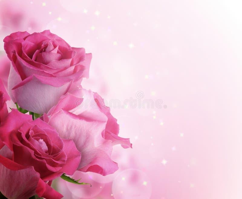 Beau fond avec des roses de fleurs image stock