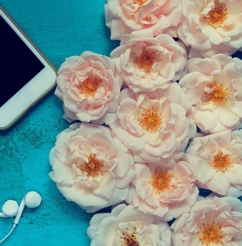 Beau fond d'été avec les roses fraîches, le smartphone et les écouteurs blancs sur une vieille table en bois peinte pour des blog image libre de droits