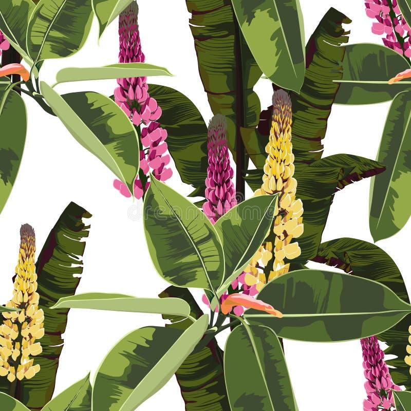Beau fond floral sans couture de modèle avec l'élastique de ficus et les fleurs lumineux tropicaux de lupines illustration stock
