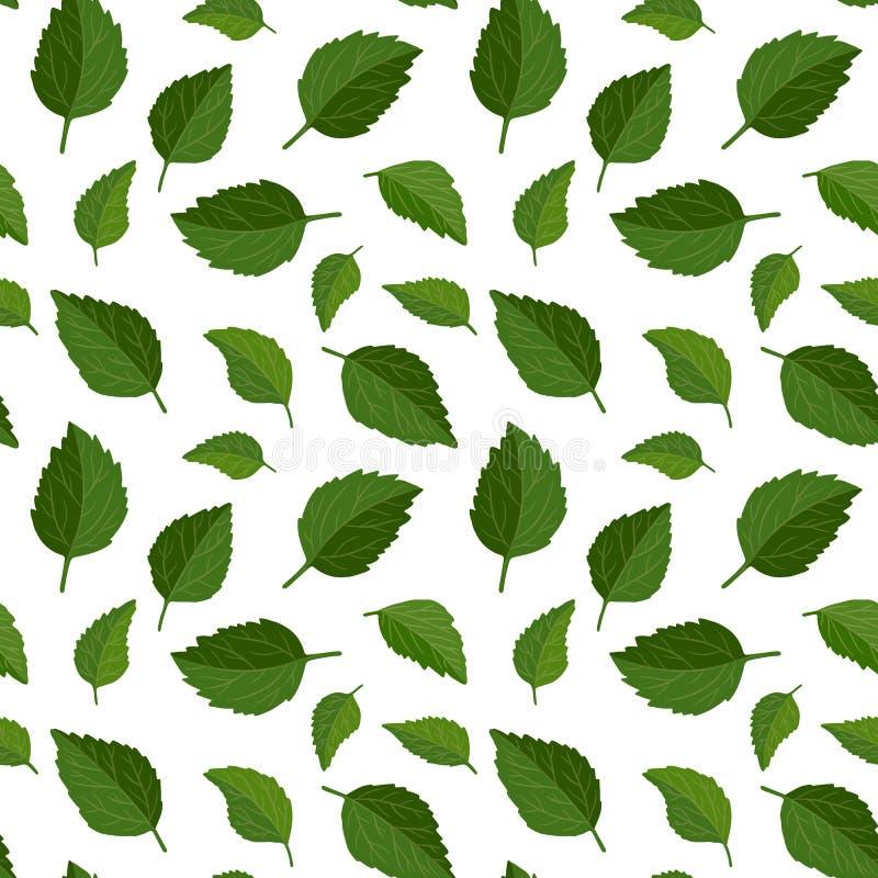 Beau fond floral sans couture de modèle Le vert laisse le contexte La ketmie laisse à vecteur réaliste la conception qu'on peut r illustration de vecteur