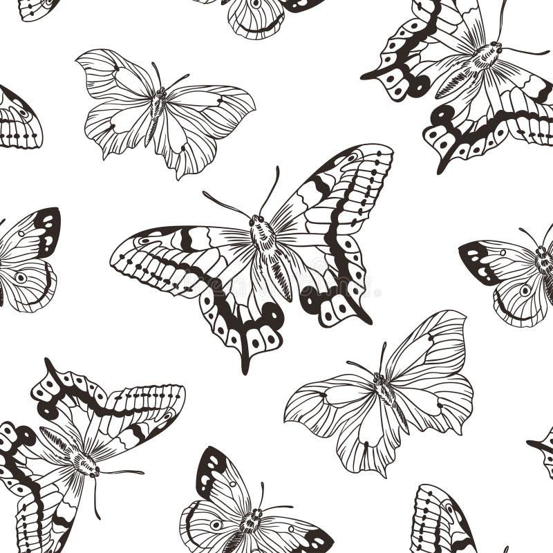 Beau fond sans couture de couleurs noires et blanches de papillons Illustration de vecteur illustration de vecteur