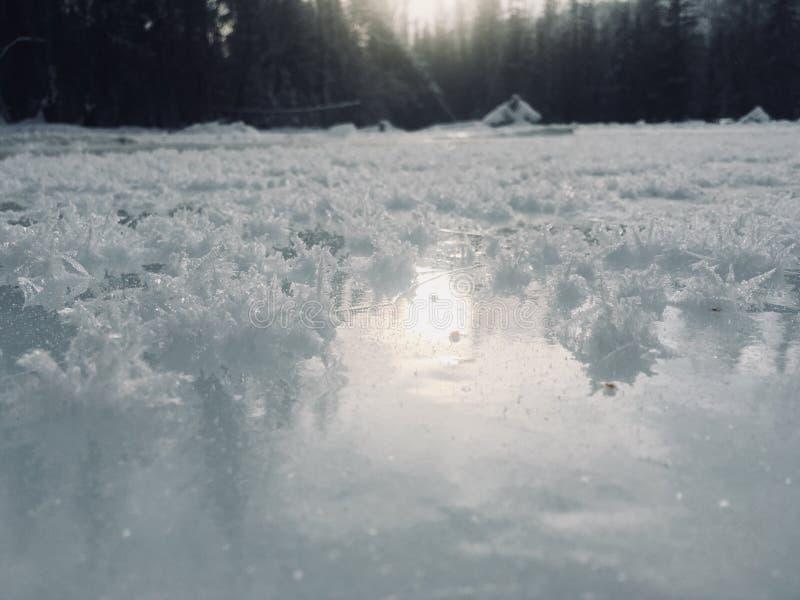 Beau gel sur la rivière glacée image libre de droits