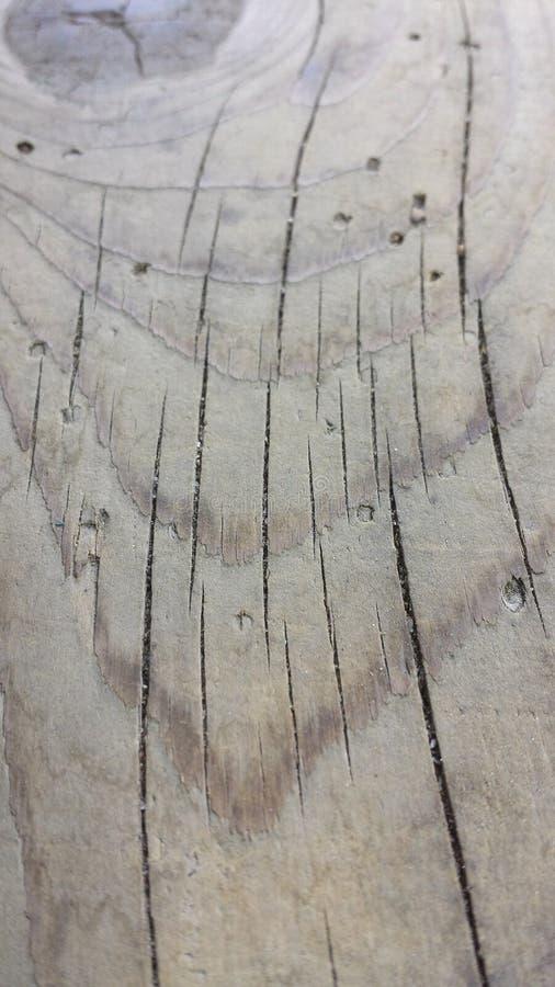 Beau grain en bois image stock
