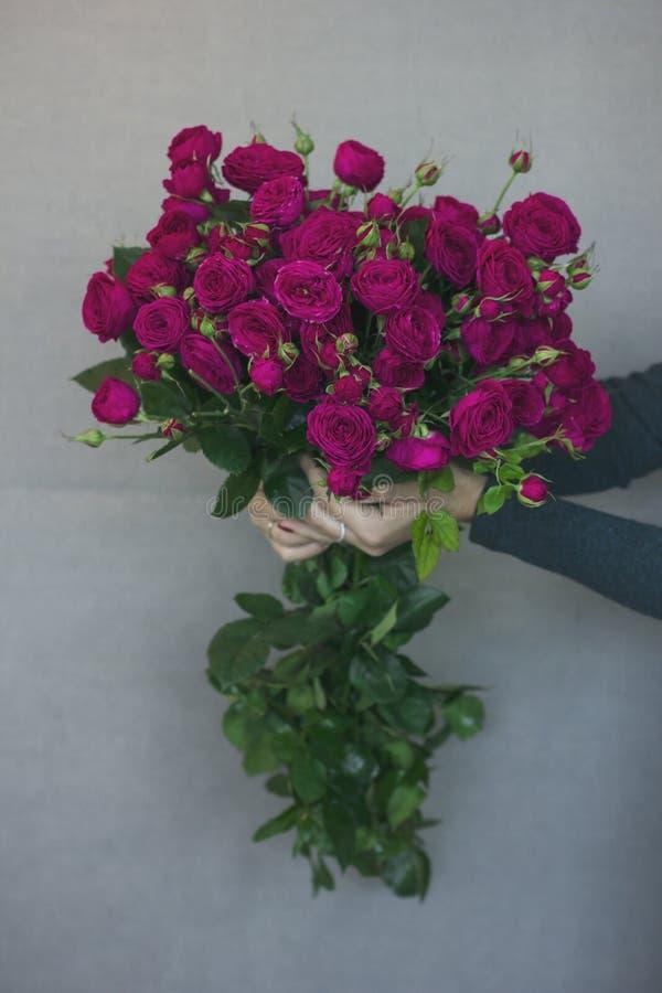 Beau grand bouquet mono rustique des roses dans des mains femelles photo stock