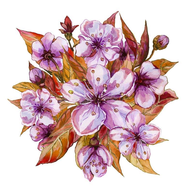 Beau groupe de fleurs d'arbre fruitier Illustration de flourish de ressort D'isolement sur le fond blanc Peinture d'aquarelle illustration libre de droits