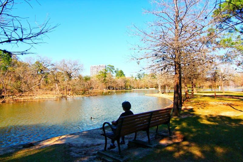 Beau Hermann Park à Houston image libre de droits