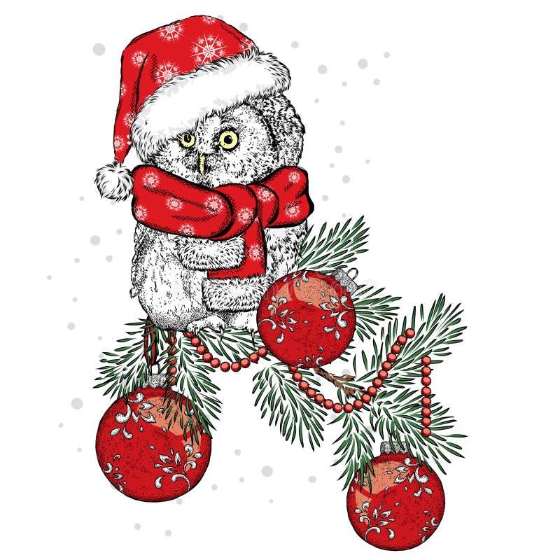 Beau hibou utilisant une écharpe Oiseau sur des décorations de Noël de branche ` S de nouvelle année et Noël illustration stock
