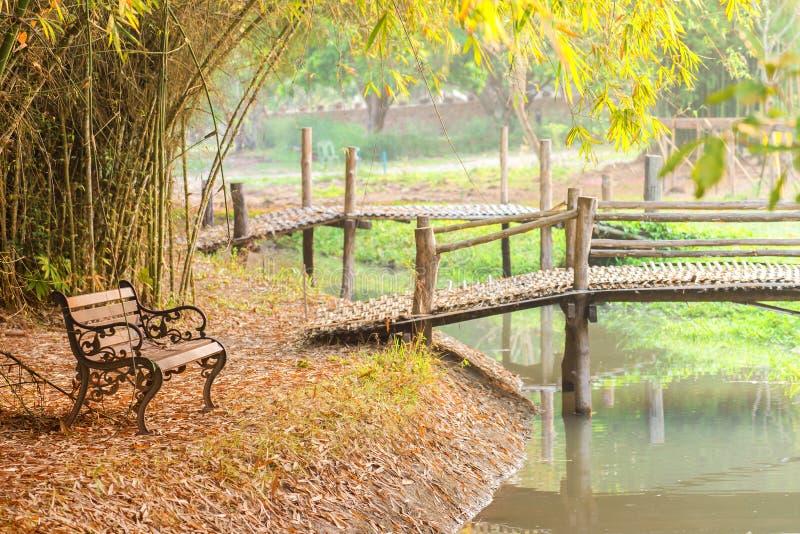 Beau jardin avec des bancs dans l'arbre d'automne au parc public images libres de droits