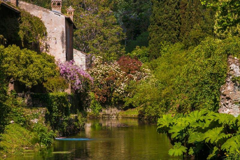 Beau jardin de cottage photos stock