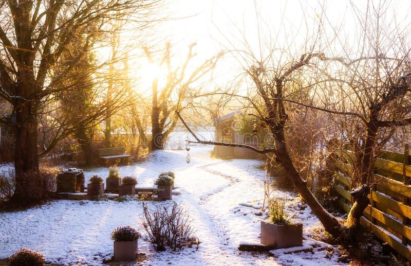 Jardin d'hiver photo stock