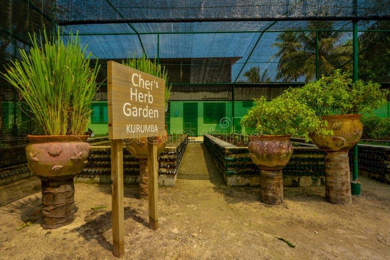 Beau jardin de fines herbes situé à la station de vacances photographie stock