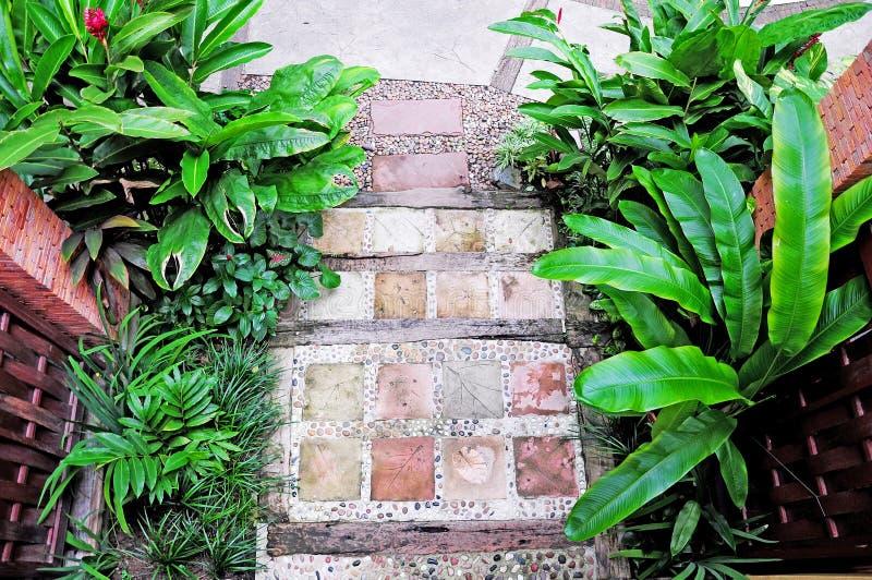 Beau jardin tropical images stock