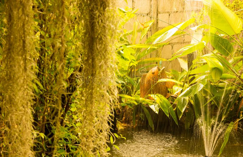 Beau jardin vert d'arrière cour avec le petit étang décoré des poissons de soufflement et de la fontaine de l'eau de terre Archit photo libre de droits