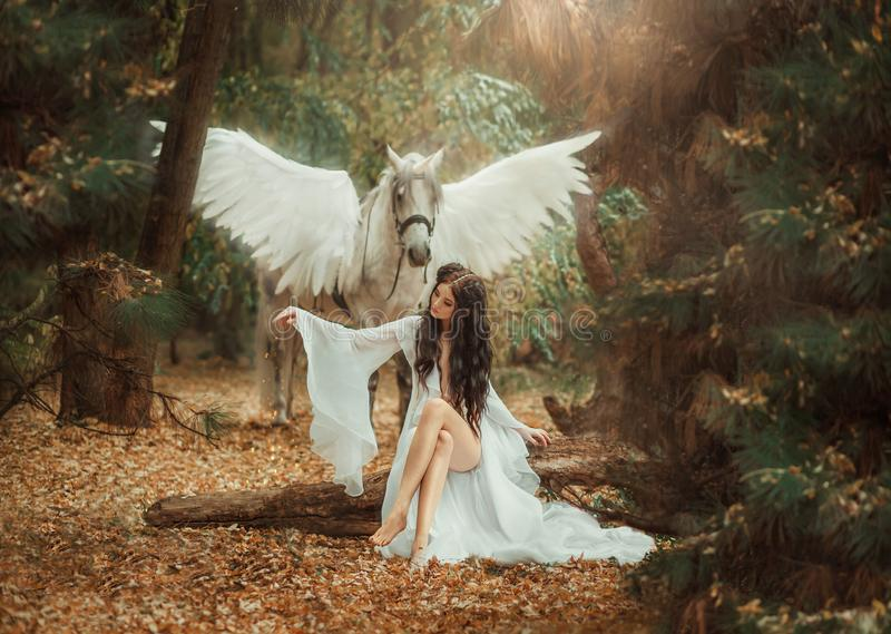 Beau, jeune elfe, marchant avec une licorne Elle porte une lumière incroyable, robe blanche Hotography d'art images libres de droits