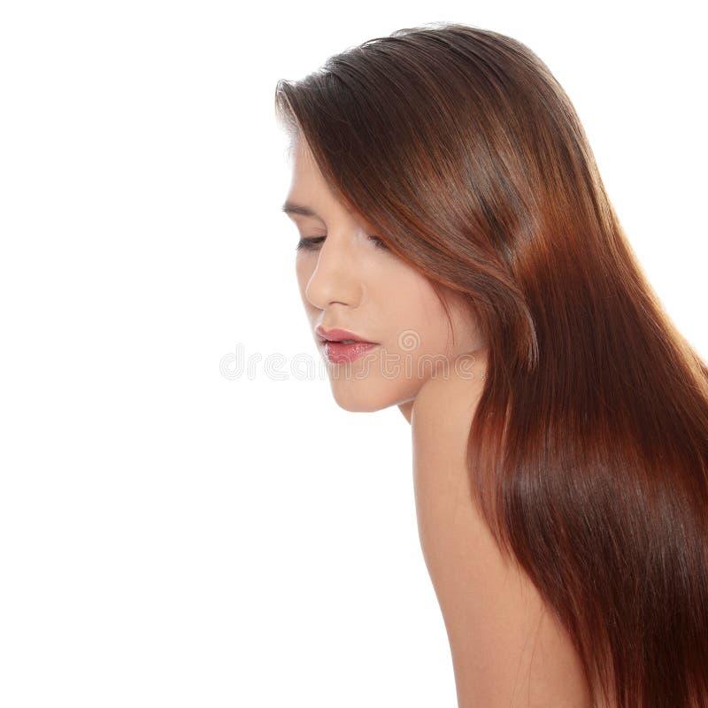 Beau jeune femme avec de longs poils sains    photographie stock libre de droits