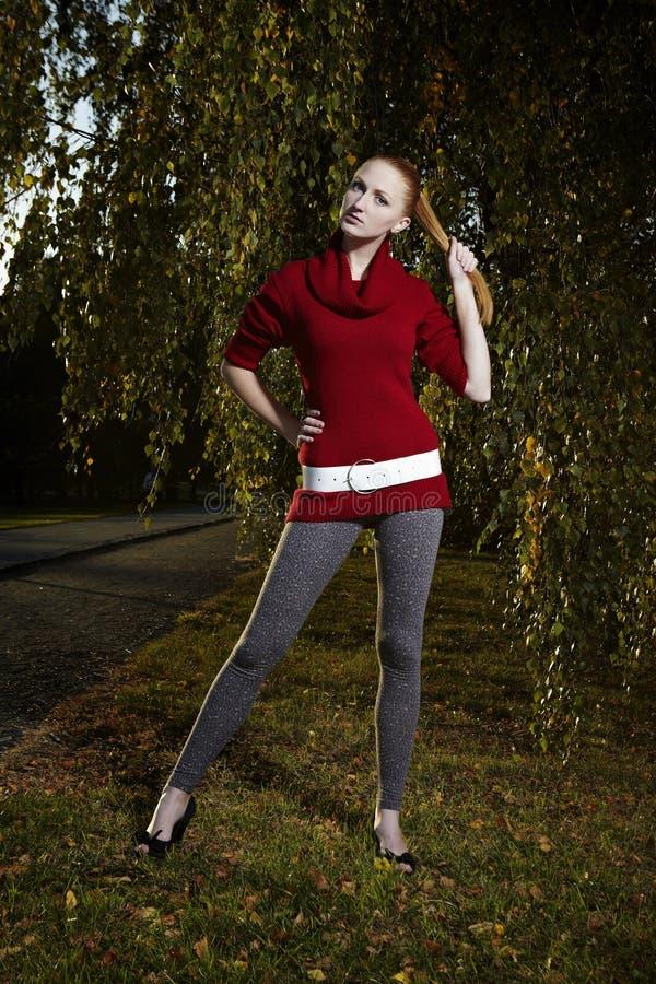 Gentille dame posant en parc d'automne image libre de droits