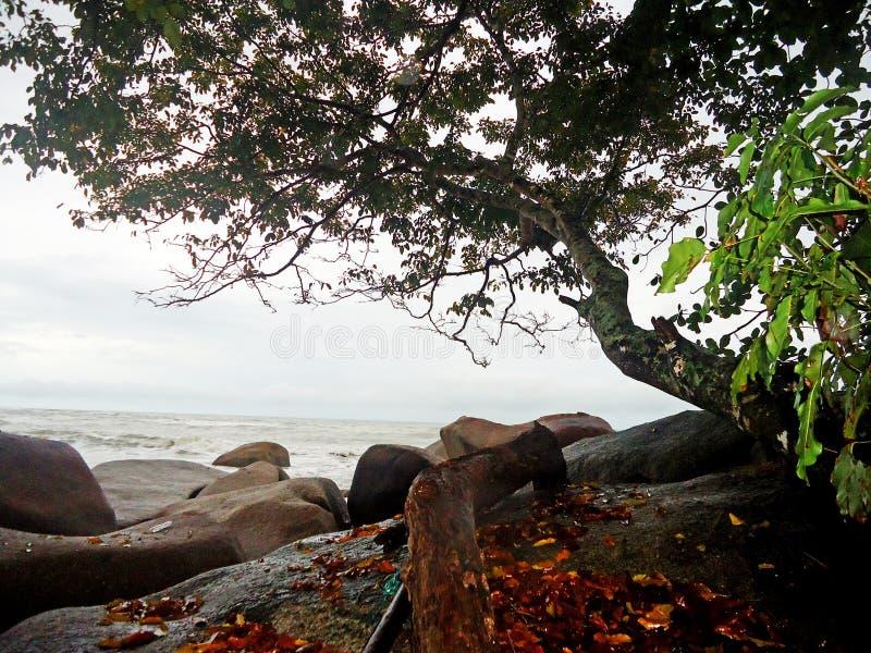 Beau jour à la plage de Temajuk au Bornéo Indonésie images stock