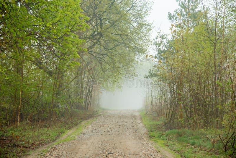 Beau jour brumeux photographie stock libre de droits