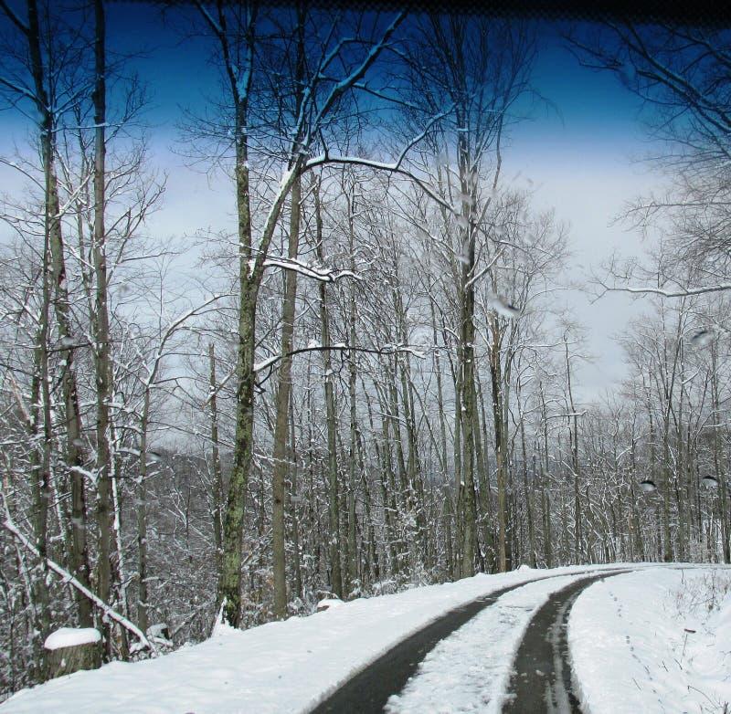 Beau jour de chute de neige photo libre de droits