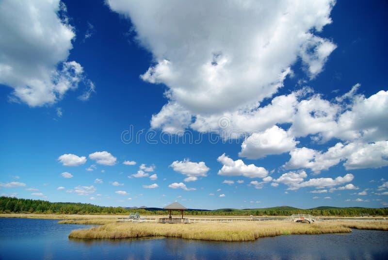 Beau lac avec le ciel bleu et les buissons d'or images libres de droits