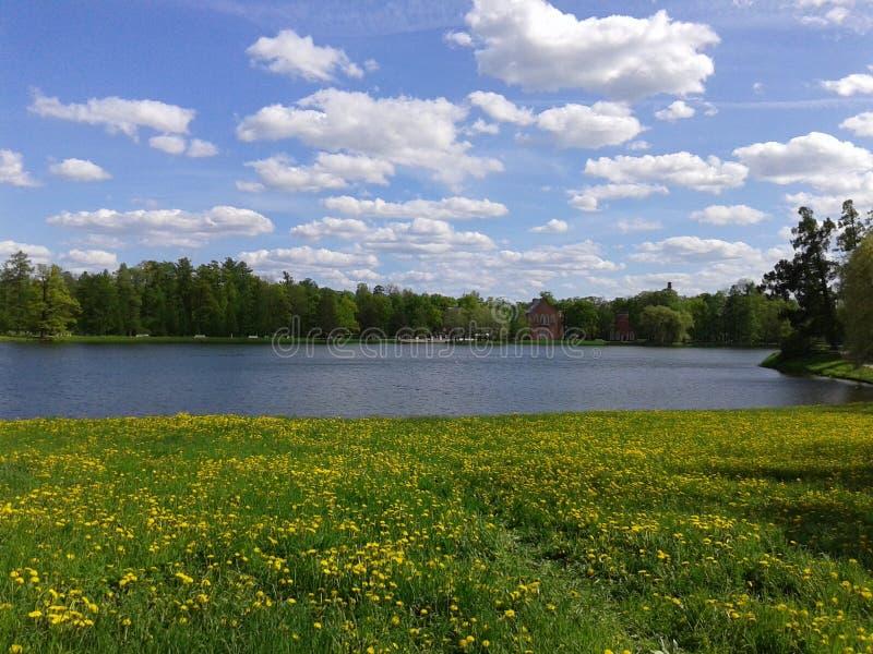Beau lac d'étoile photos stock