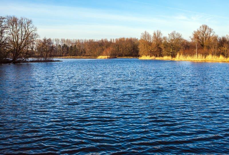 Beau lac de ressort en parc néerlandais image libre de droits