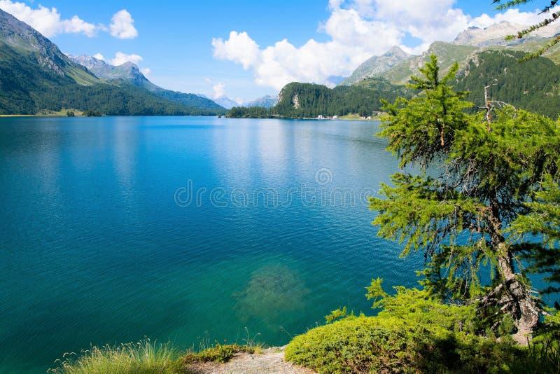 Beau lac de Sils dans Engadin supérieur, Suisse photographie stock libre de droits